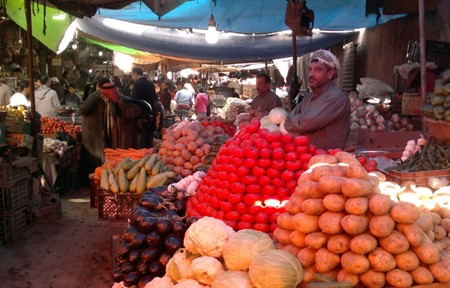 Iraqi government ratified proposal for aiding the local farmers